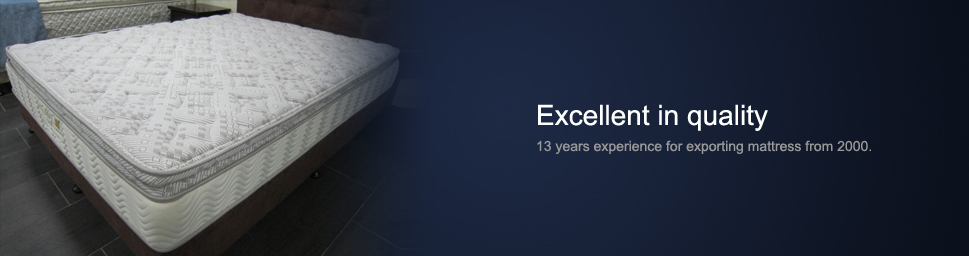 Everbright Bedding Mattress